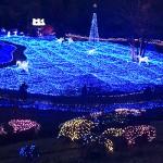 京都イルミエール2016開催期間と点灯時間は?見所とアクセス情報