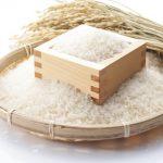 米を冷蔵庫以外で保存する方法は?